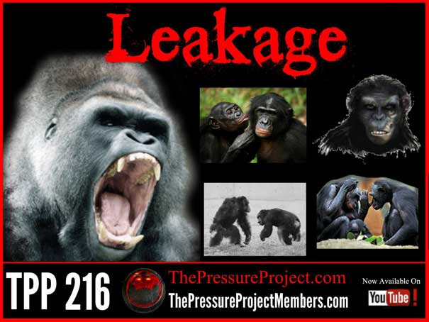 TPP 216: LEAKAGE